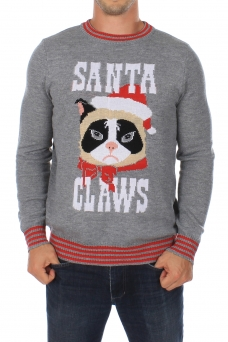 cat_christmas_sweater