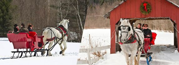 topnotch-equestrian-sleigh-ride