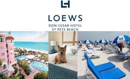 loewsdoncesarhotel2