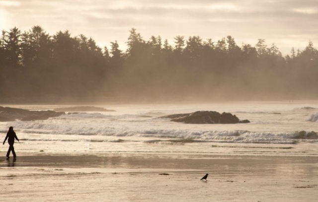 chesterman-beach-tofino-peter-jackson